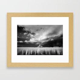 Big Cypress National Preserve, Florida Framed Art Print