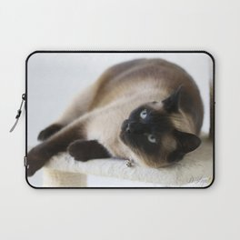 Sulley, A Siamese Cat Laptop Sleeve