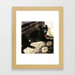 Boone Framed Art Print