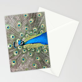 Flamboyant Peacock Stationery Cards