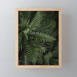 Tropical leaves 02 Framed Mini Art Print