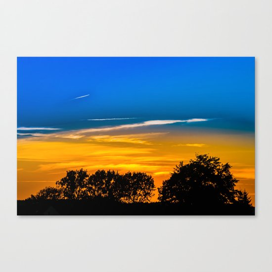 Golden Touch Canvas Print