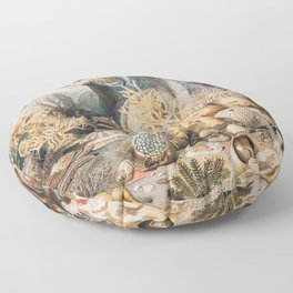 Ocean Life by James M. Sommerville Floor Pillow