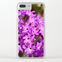 Pinky Purply Wildflowers of Southern California by Reay of Light Clear iPhone Case