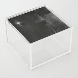 Dark Horse Acrylic Box