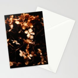 Warm Glow Stationery Cards