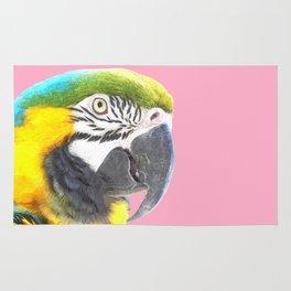 Macaw Portrait Pink Background Rug