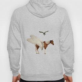 Paint Pegasus & Owl Hoody