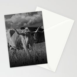 Texas Longhorn Steers under a Cloudy Sky in Black & White Stationery Cards