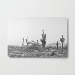 DESERT X / Scottsdale, Arizona Metal Print