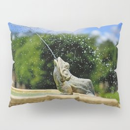 Secret Garden Splashes Pillow Sham