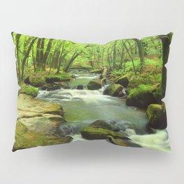 Golitha Falls Pillow Sham