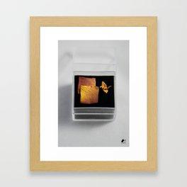 Orange Rose Hanakami Zen Crane in Display Case Framed Art Print