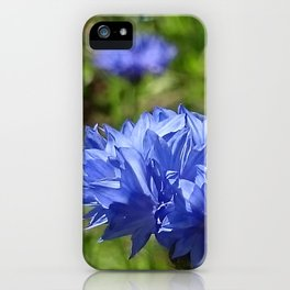 blossom2 iPhone Case