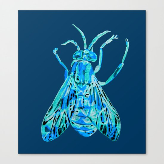 Horse Fly Canvas Print
