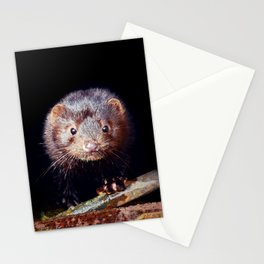 Urban Mink Stationery Cards