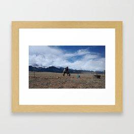 Horse play Framed Art Print