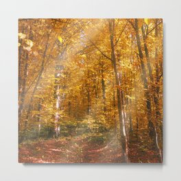 Autumn Forrest Gold Rays Metal Print