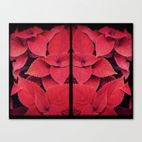 moulin rouge Canvas Prints featuring Rouge by KunstFabrik_StaticMovement Manu Jobst