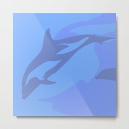 Dolphin Background Metal Print
