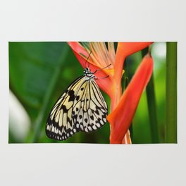 Swallowtail Butterfly Rug