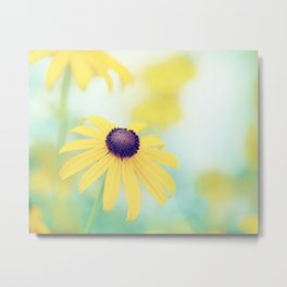 Yellow Turquoise Teal Aqua Blue Daisy Flower Photography, Blackeyed Susan Floral Nature Metal Print