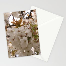 Blossom Blades Stationery Cards