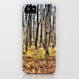 Fall in the Woods iPhone Case