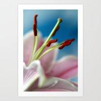 Pink Flower I Art Print
