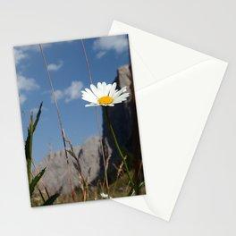 Leucanthemum maximum flower, Dolomiti mountains, Italy Stationery Cards