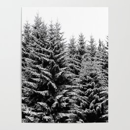 snowy christmas TREES Poster
