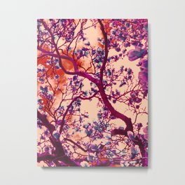 Magnolia Popalia Metal Print