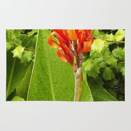Floral Print 044 Rug
