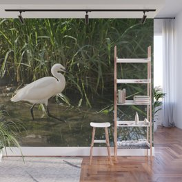 Great white egret bird wading in the river bank Wall Mural