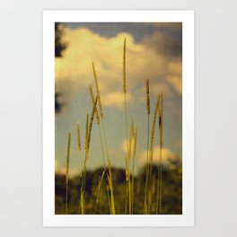 A Place to Breathe Art Print