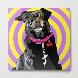 Hypno Doggie Metal Print