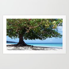 beach tree tropic Art Print