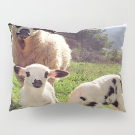 Ewe and Twin Spring Lambs Pillow Sham