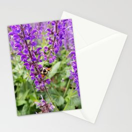 Honey Bee on Lavender Stationery Cards