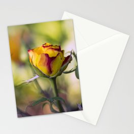 Bright cheeerful rose Stationery Cards