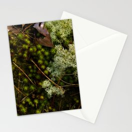 Moss Layers Stationery Cards
