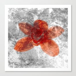 "Red Flower 10""  Canvas Print"