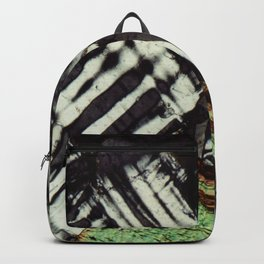 Feldspar and Biotite Backpack