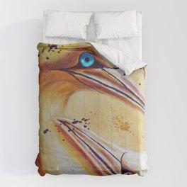 Complicity | Complicité Comforters