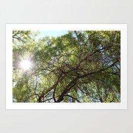 Grünes Paradies im Sommer Art Print