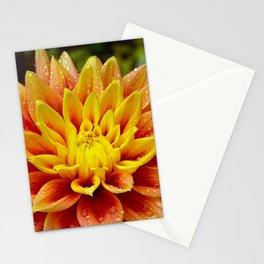 Orange and yellow dahlia Stationery Cards