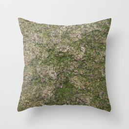 Stone and moss Throw Pillow