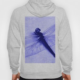 Dragonfly Frozen in Blue Hoody