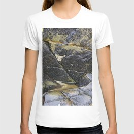 Reflective Rock Surface with Lichen Texture T-shirt