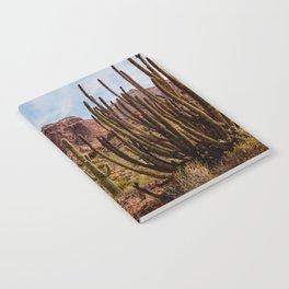 Cacti Variety Notebook